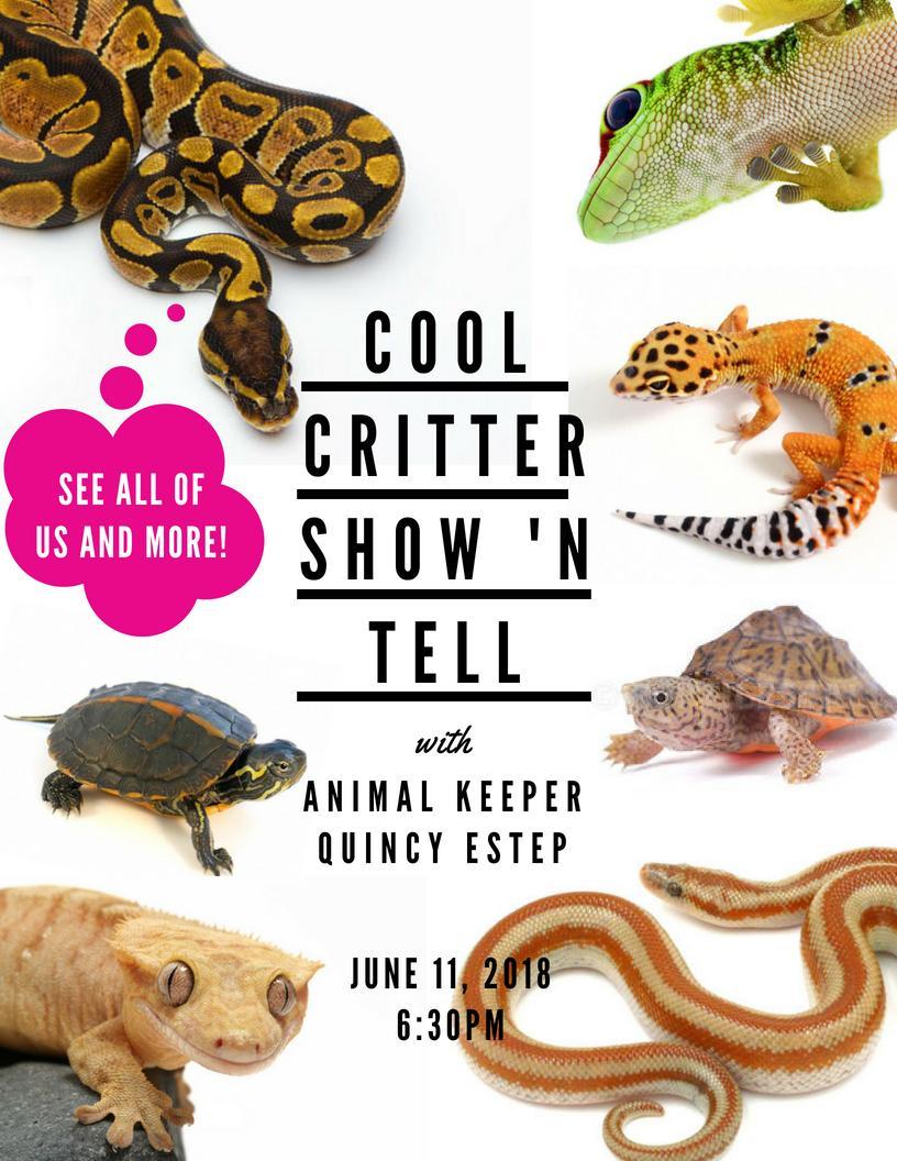 Cool Critter